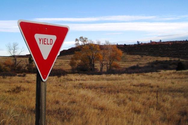 yield02