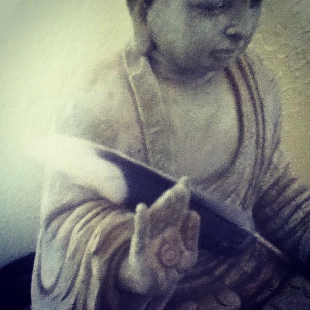 buddhafeather