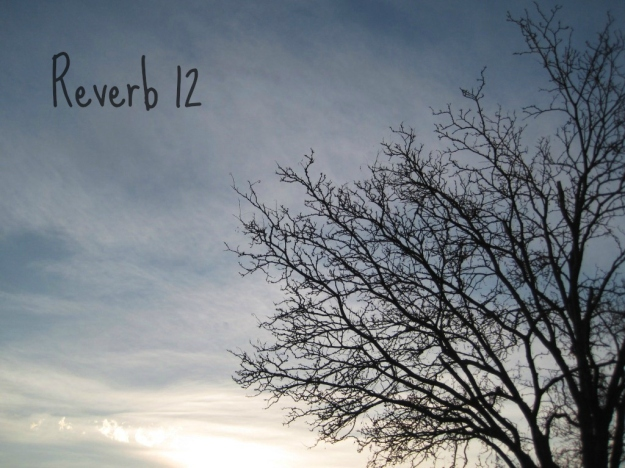 reverb12