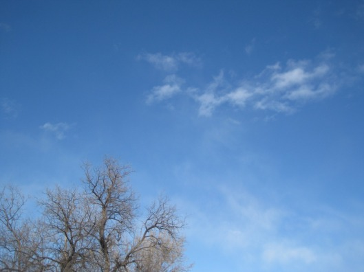 New Year's Day Sky