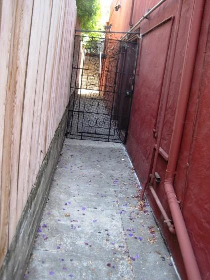 purplepetalalley-e1379420510193