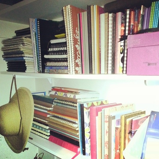 journalshelves