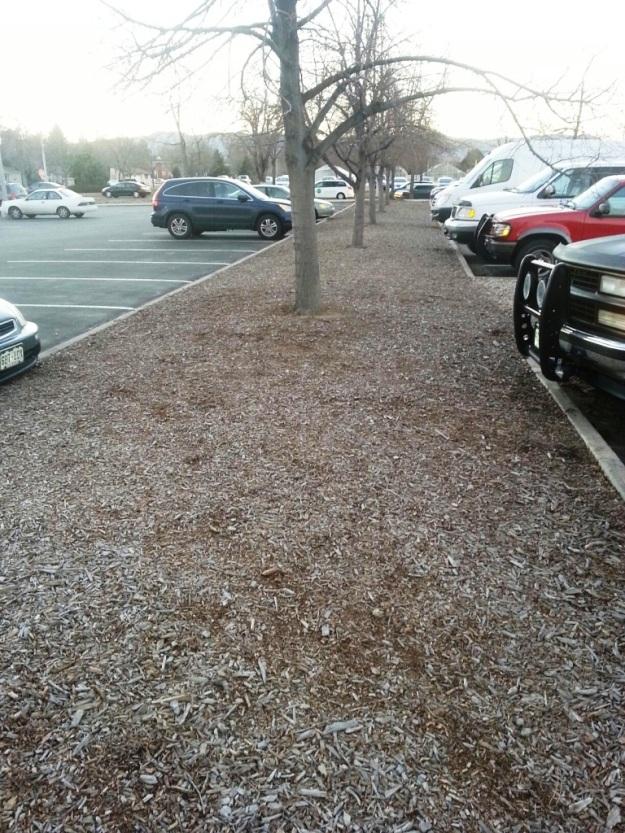 parkinglotpath