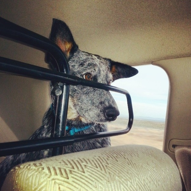 """Are we there yet?"""