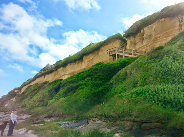 beachaccesscliff