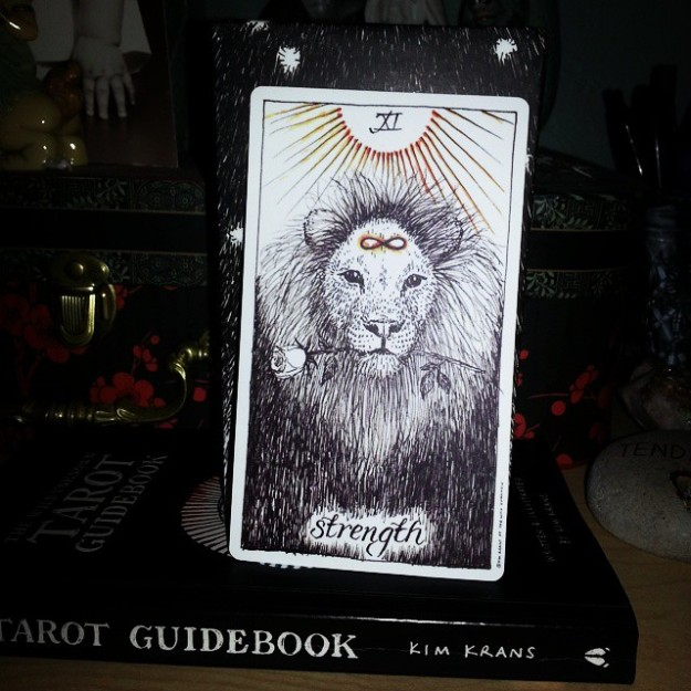 The Wild Unknown Tarot Deck: Strength