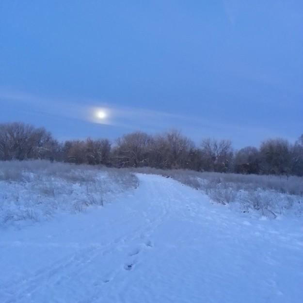 snowmoon02