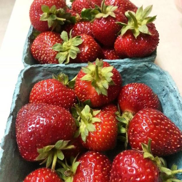 gardensweetberries02