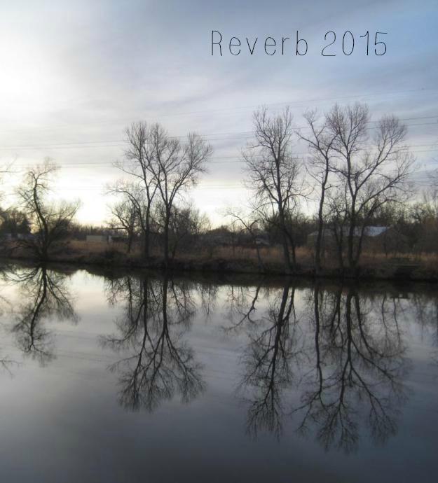 reverb2015