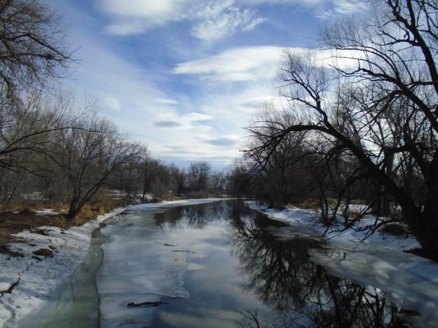 The Poudre River, from our walk this morning, just before I noticed a mink running along the ice