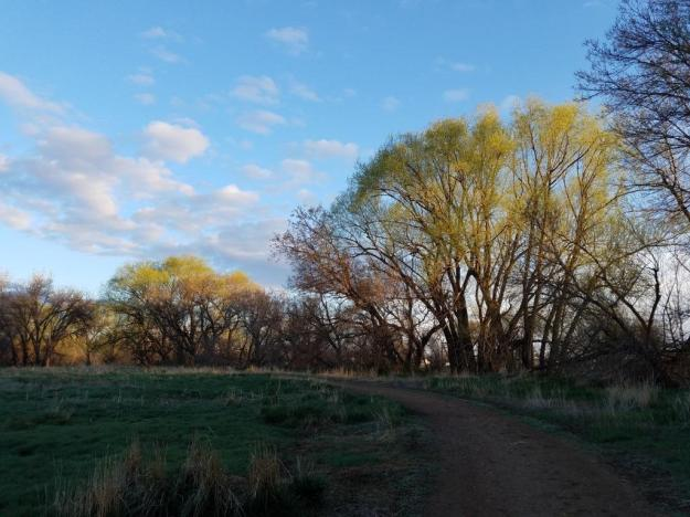 morningwalkpoudre