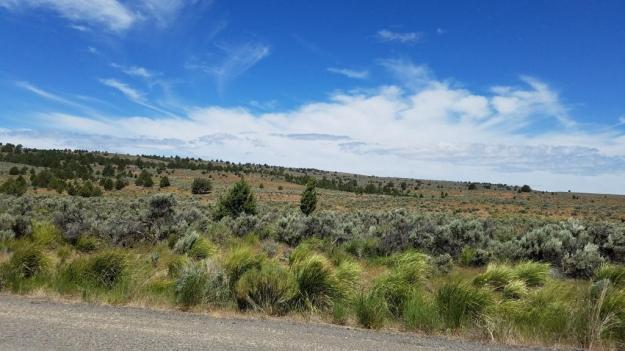 Somewhere in central Oregon