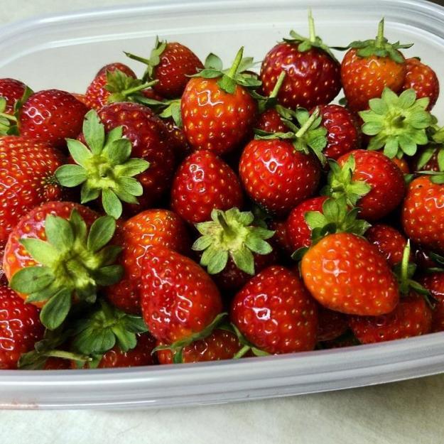 End of summer berries