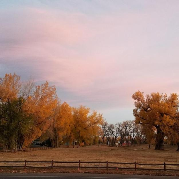 morningfallcottonwoods