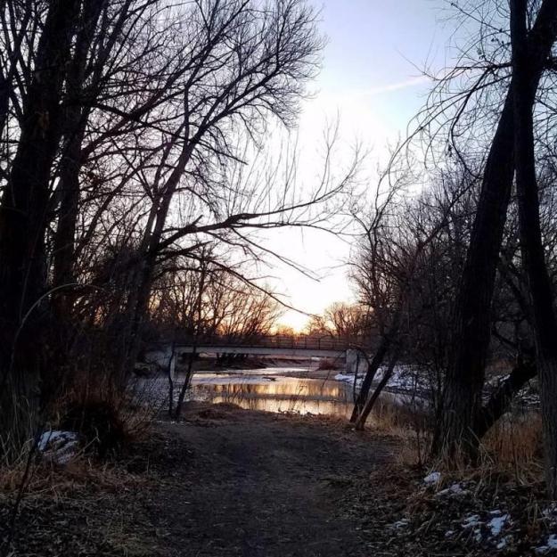 morningriverwalk